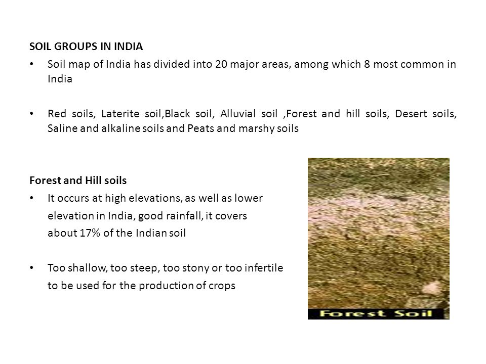 SOIL GROUPS IN INDIA Soil map of India has divided into 20 major areas, among which 8 most common in India Red soils, Laterite soil,Black soil, Alluvial soil,Forest and hill soils, Desert soils, Saline and alkaline soils and Peats and marshy soils Forest and Hill soils It occurs at high elevations, as well as lower elevation in India, good rainfall, it covers about 17% of the Indian soil Too shallow, too steep, too stony or too infertile to be used for the production of crops