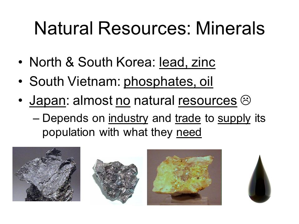 Natural Resources: Minerals North & South Korea: lead, zinc South Vietnam: phosphates, oil Japan: almost no natural resources  –Depends on industry and trade to supply its population with what they need