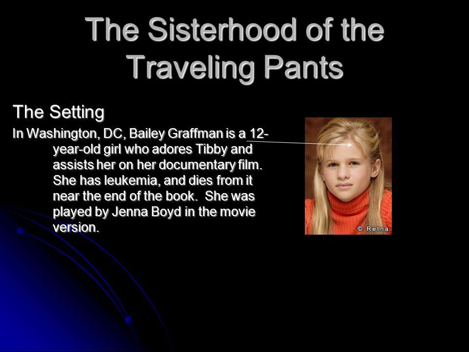 Sister hood of the traveling pants essay! help!!!?