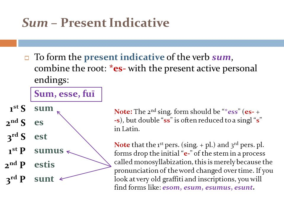 REVIEW TOPIC: WEEK 2 Sum, Possum, Perfect Indicative System. - ppt ...