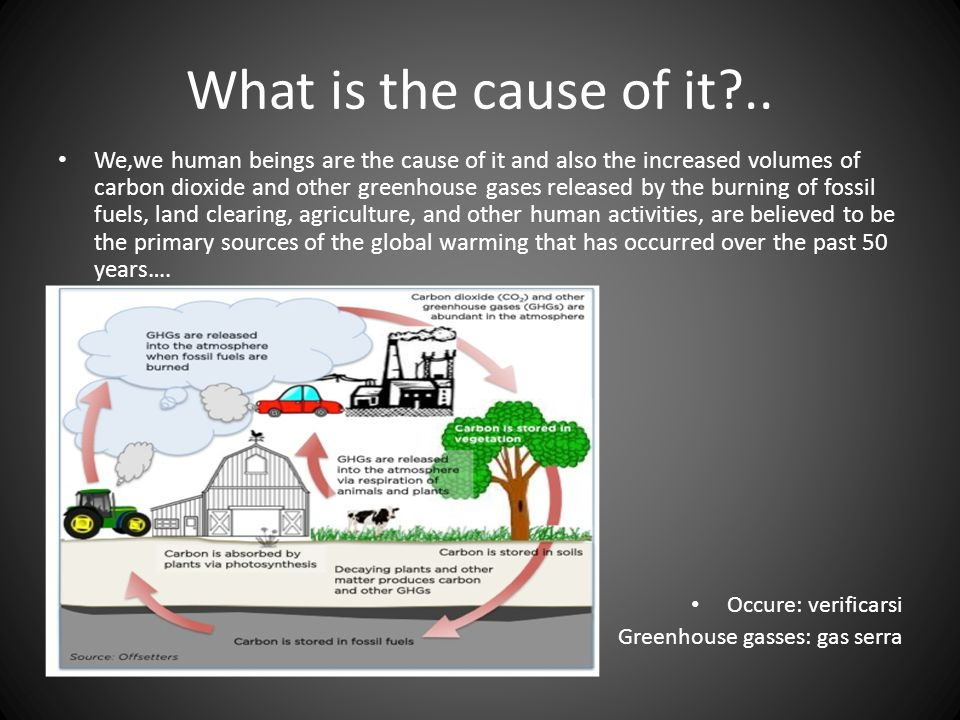 an essay on the effects of global warming Free essay: global warming is one of the most serious problems that people all over the world are dealing with in fact, however, many people may not realize.