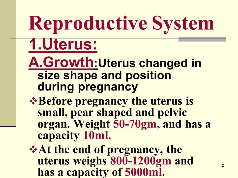 Adaptations pregnancy