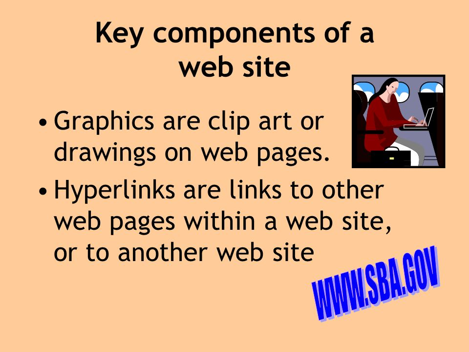 Types of E-Commerce web sites 1.Product Information Includes descriptions of products offered for sale Product payment information Return and warranty policies General information about business Contact information for company