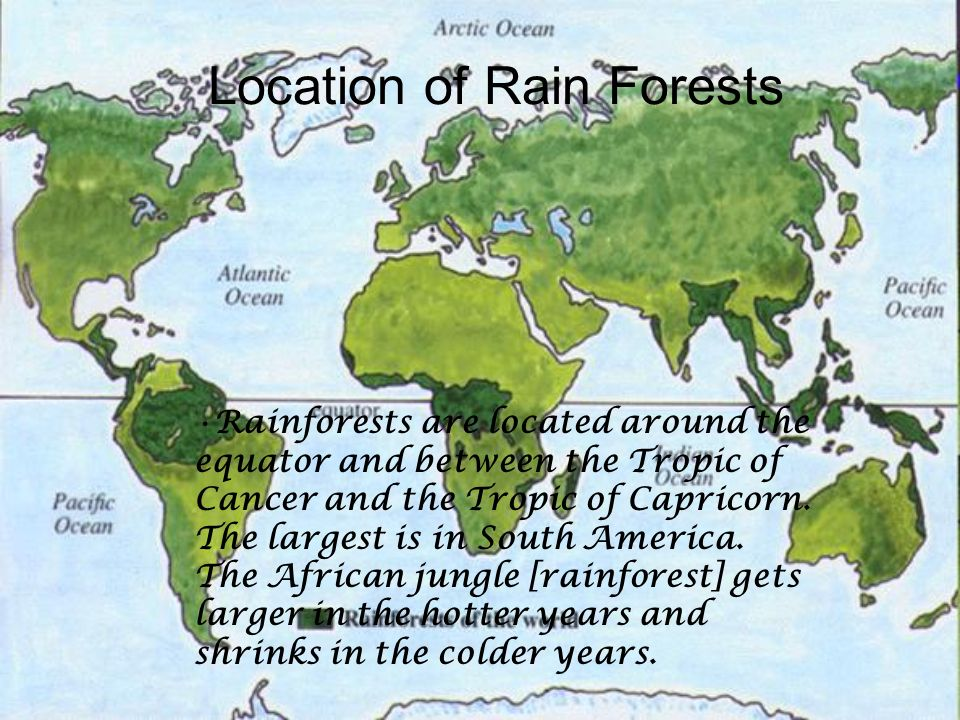 The Rainforest By: Keanna, Blake, and Michael. What is a rain ...