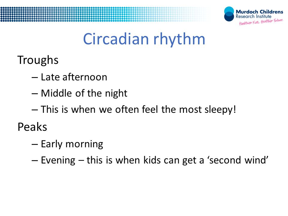 Circadian rhythm Troughs – Late afternoon – Middle of the night – This is when we often feel the most sleepy.