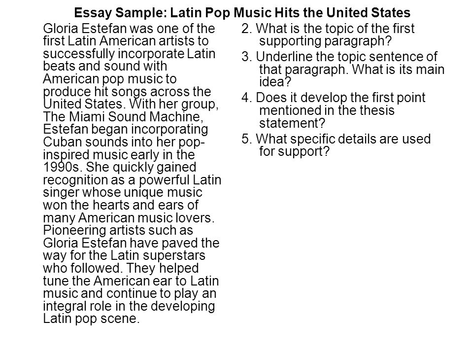 Latin Pop Essay - image 2