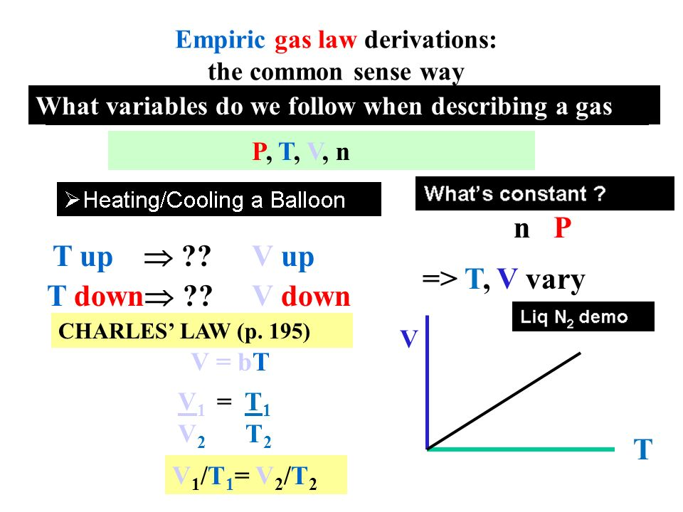 How does Avogadro's Gas Law make sense?