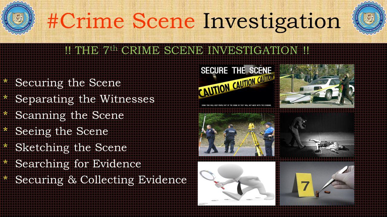 THE 7 th CRIME SCENE INVESTIGATION !