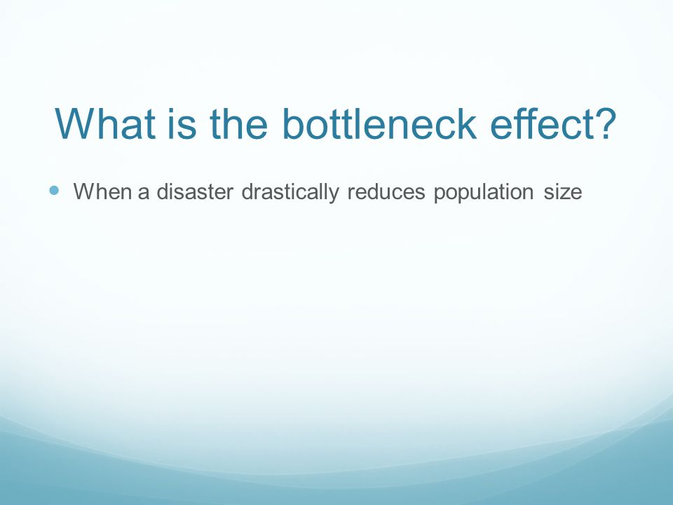 What is the bottleneck effect When a disaster drastically reduces population size