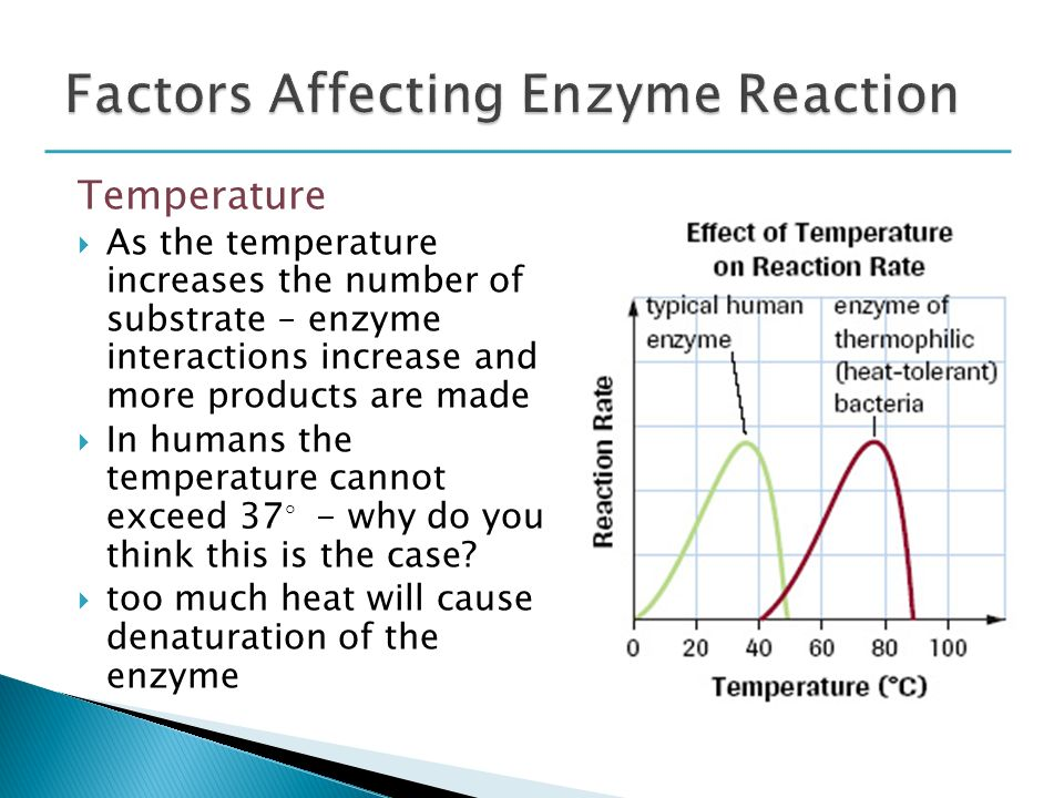 temperature and chemical reactions Chem 100 2/26/08 1 the effect of temperature and concentration on reaction rate introduction factors influencing reaction rate: we know that some reactions such as those between ions in solution frequently proceed very rapidly, while others proceed so.
