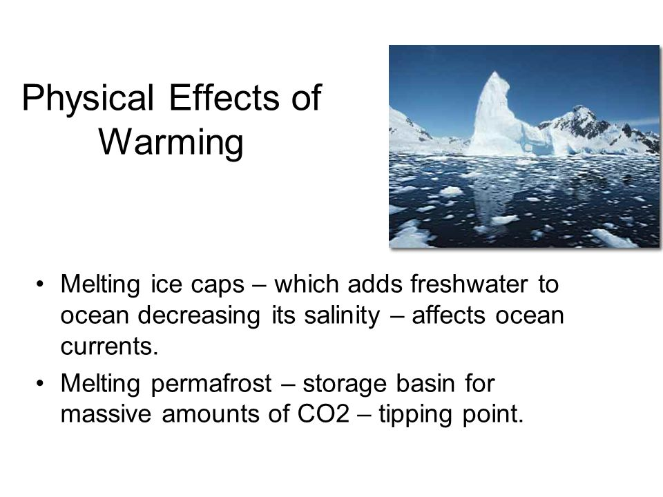 Physical Effects of Warming Melting ice caps – which adds freshwater to ocean decreasing its salinity – affects ocean currents.