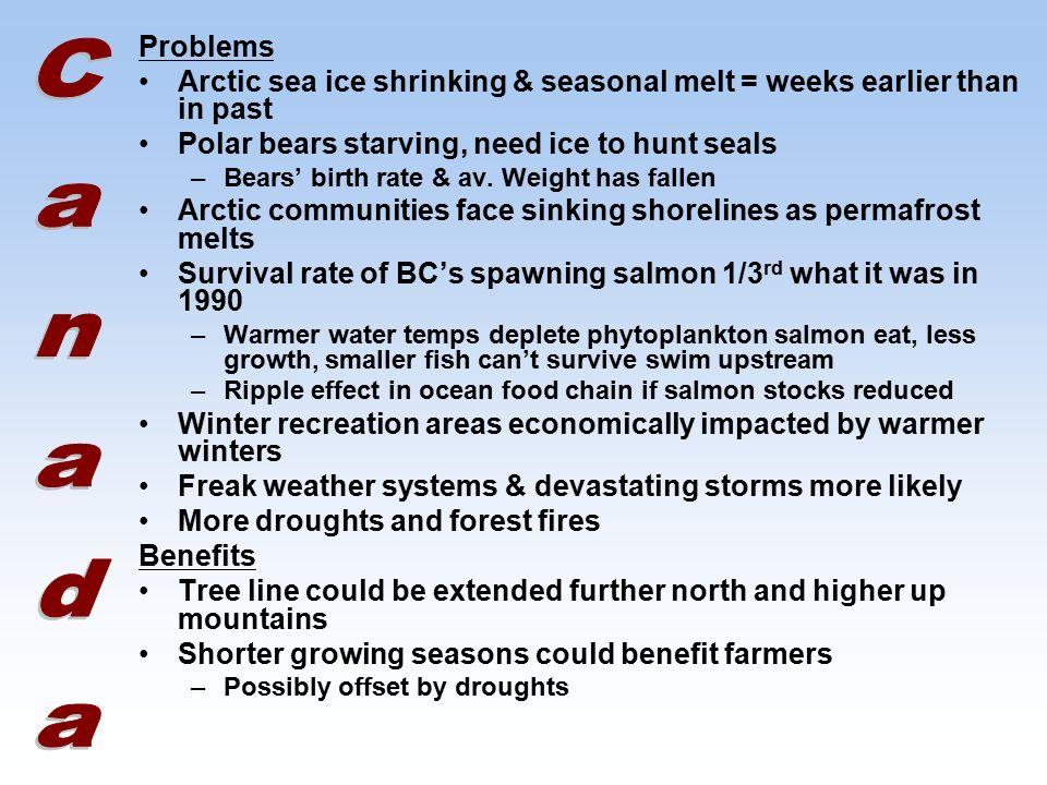 Problems Arctic sea ice shrinking & seasonal melt = weeks earlier than in past Polar bears starving, need ice to hunt seals –Bears' birth rate & av.