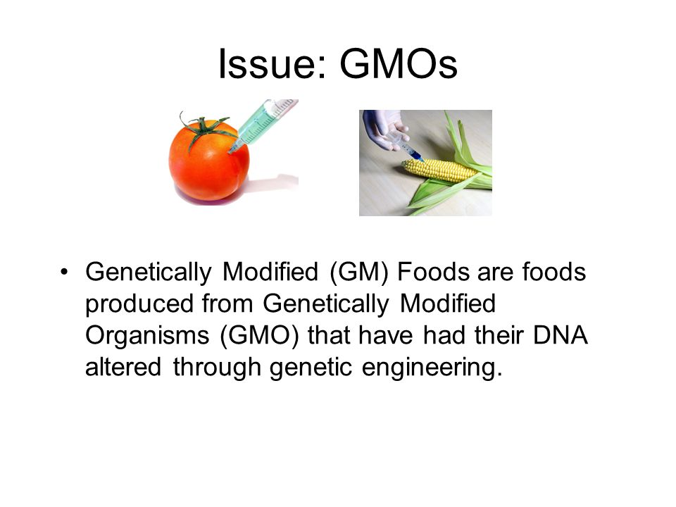 Issue: GMOs Genetically Modified (GM) Foods are foods produced from Genetically Modified Organisms (GMO) that have had their DNA altered through genetic engineering.