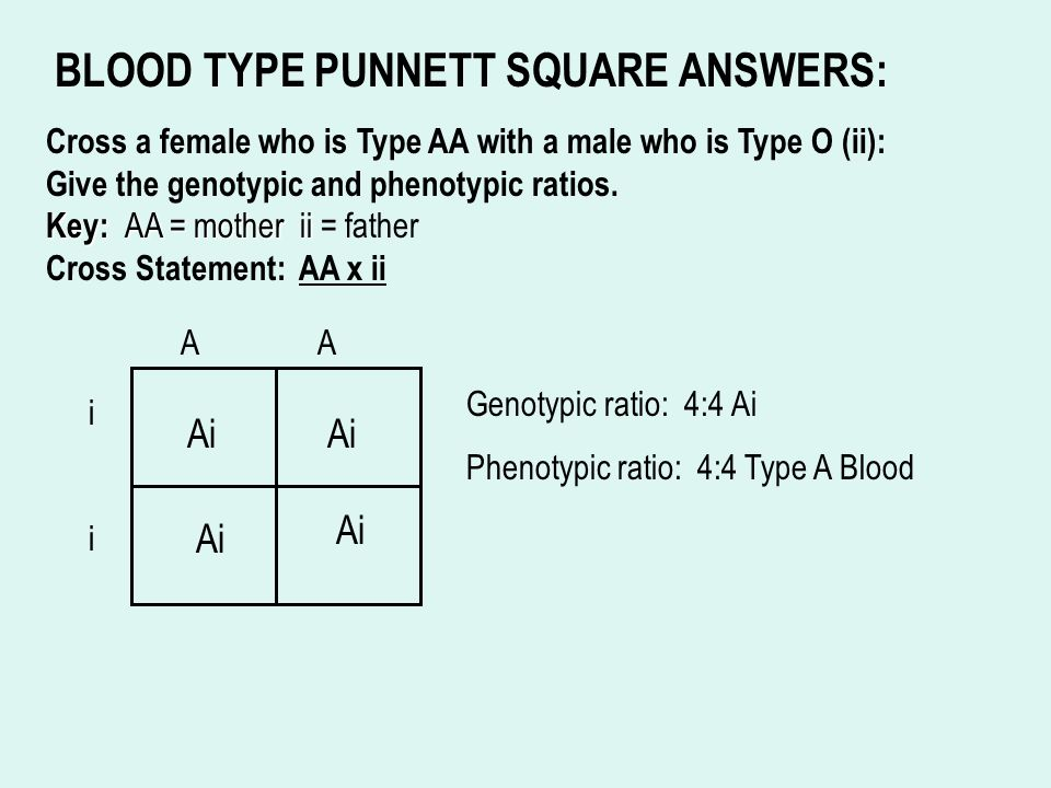 Blood type and inheritance worksheet answers