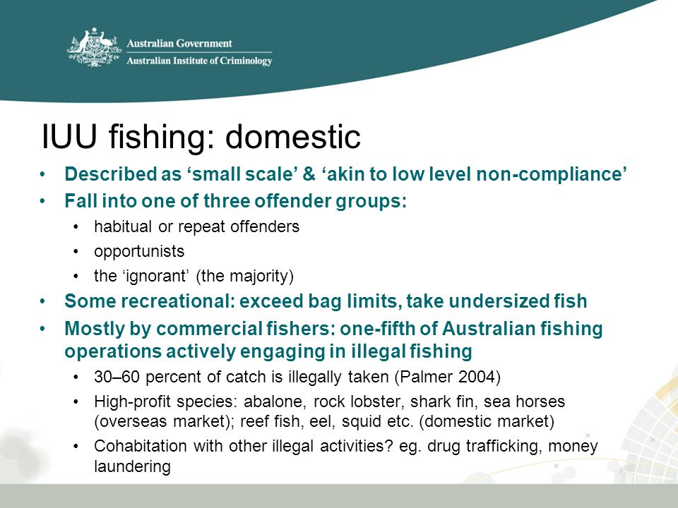 IUU fishing: domestic Described as 'small scale' & 'akin to low level non-compliance' Fall into one of three offender groups: habitual or repeat offenders opportunists the 'ignorant' (the majority) Some recreational: exceed bag limits, take undersized fish Mostly by commercial fishers: one-fifth of Australian fishing operations actively engaging in illegal fishing 30–60 percent of catch is illegally taken (Palmer 2004) High-profit species: abalone, rock lobster, shark fin, sea horses (overseas market); reef fish, eel, squid etc.