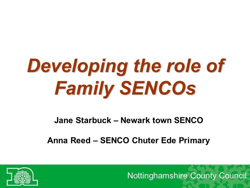role of the senco