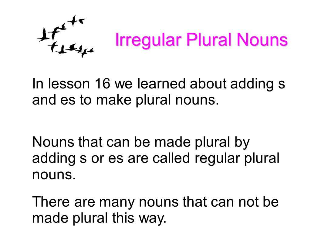 Workbooks Irregular Plural Nouns Worksheets Free Printable