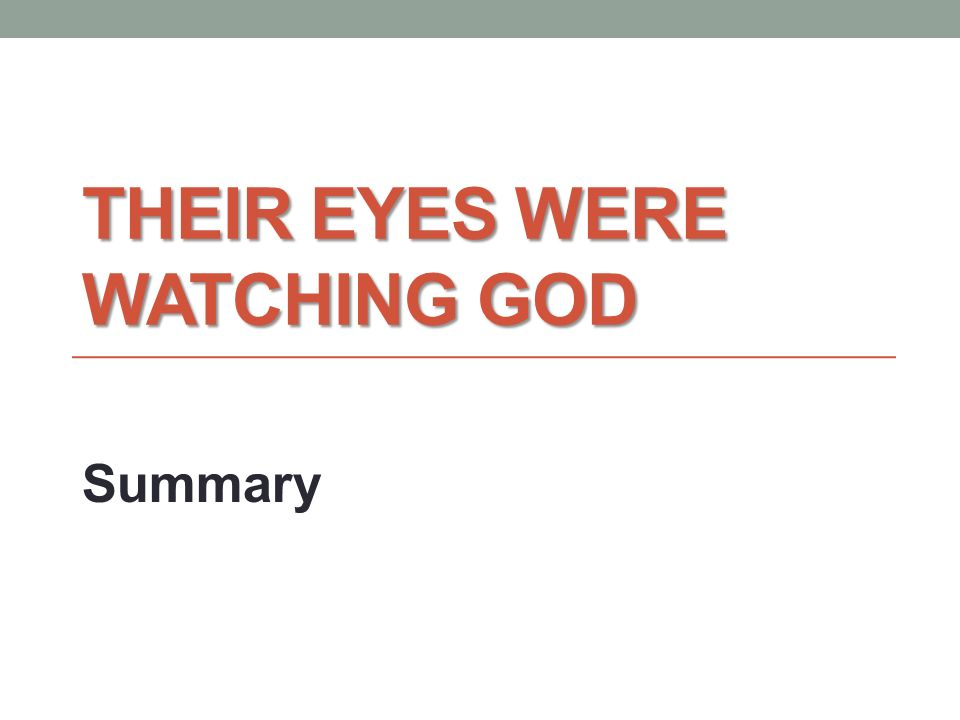 ap essay on their eyes were watching god