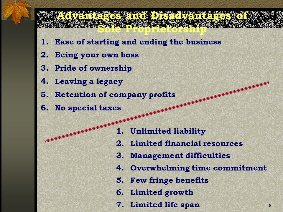 8 8 advantages and disadvantages - Being Your Own Boss Advantages And Disadvantages