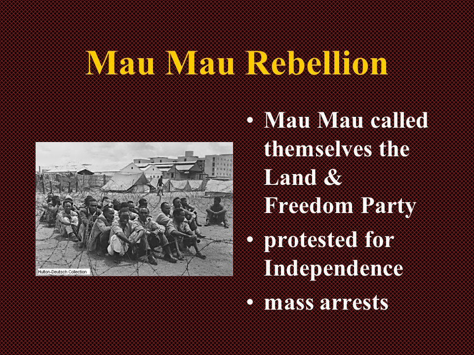 Mau Mau Rebellion Mau Mau called themselves the Land & Freedom Party protested for Independence mass arrests
