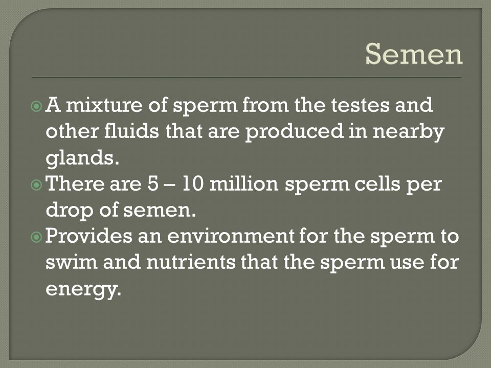 Semen  A mixture of sperm from the testes and other fluids that are produced in nearby glands.