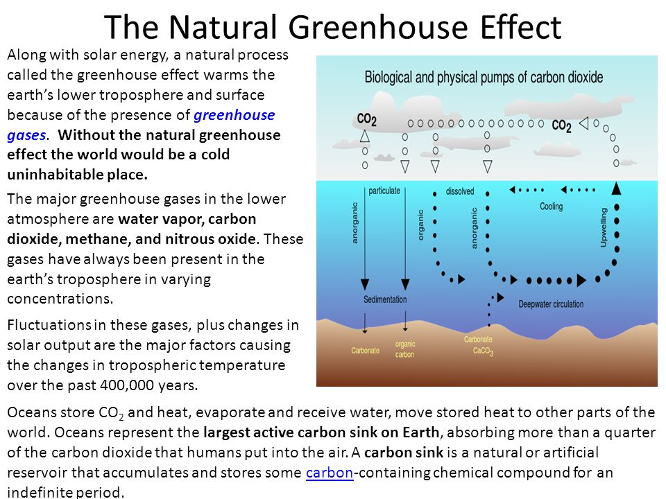 The Natural Greenhouse Effect Along with solar energy, a natural process called the greenhouse effect warms the earth's lower troposphere and surface because of the presence of greenhouse gases.