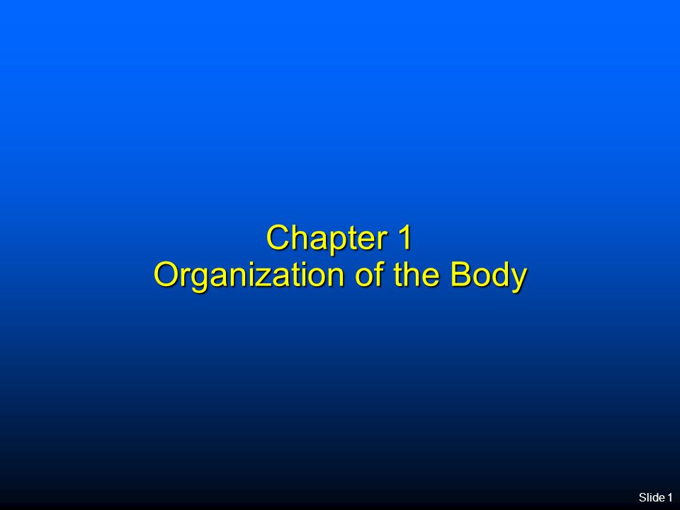 Slide 1 Chapter 1 Organization of the Body. Anatomy and Physiology ...