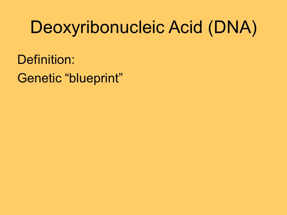 Genetic terminology what makes these two individuals so similar 7 deoxyribonucleic acid dna definition genetic blueprint malvernweather Images