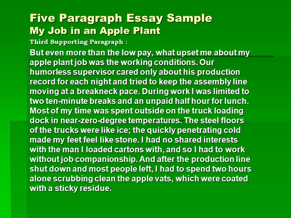 five paragraph essay sample my job in an apple plant introductory 3 third supporting