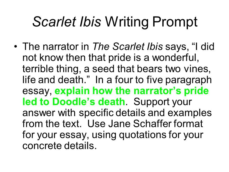 five paragraph essay outline worksheet