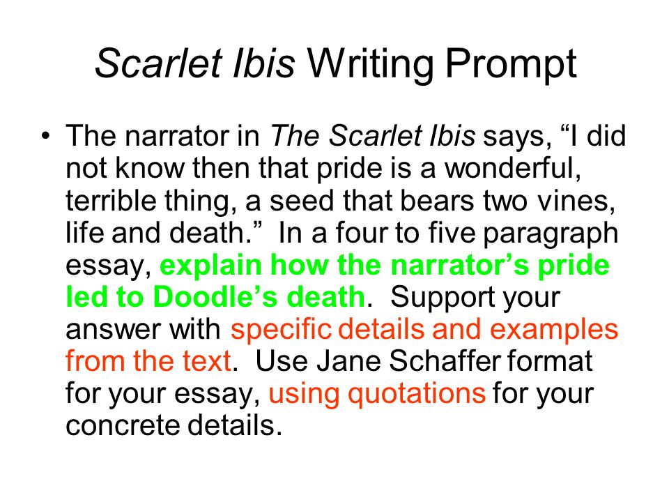Thesis statement for the scarlet ibis
