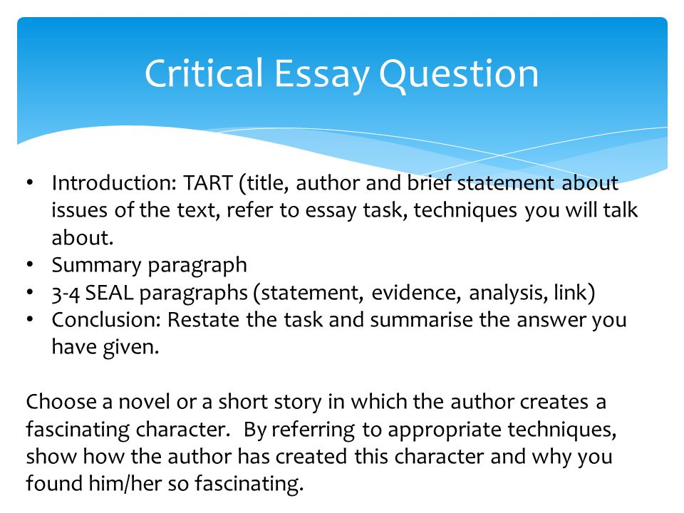 critical essay plan