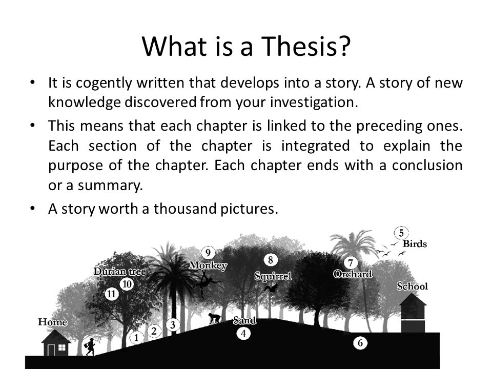 Purpose of a phd thesis