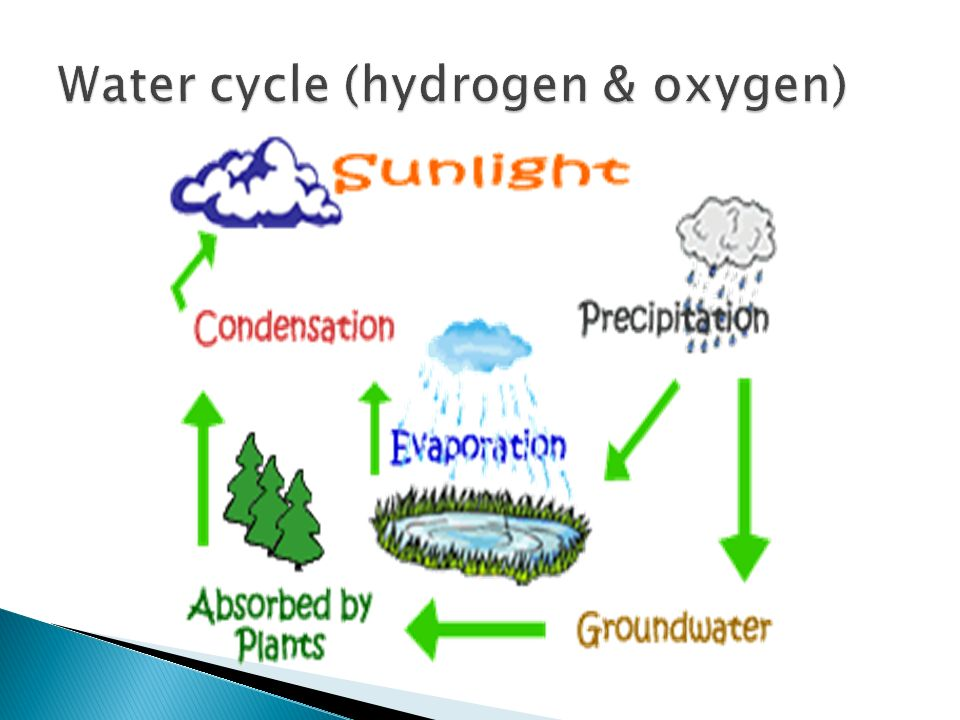 Hydrogen oxygen carbon and nitrogen the water cycle does 3 ccuart Images