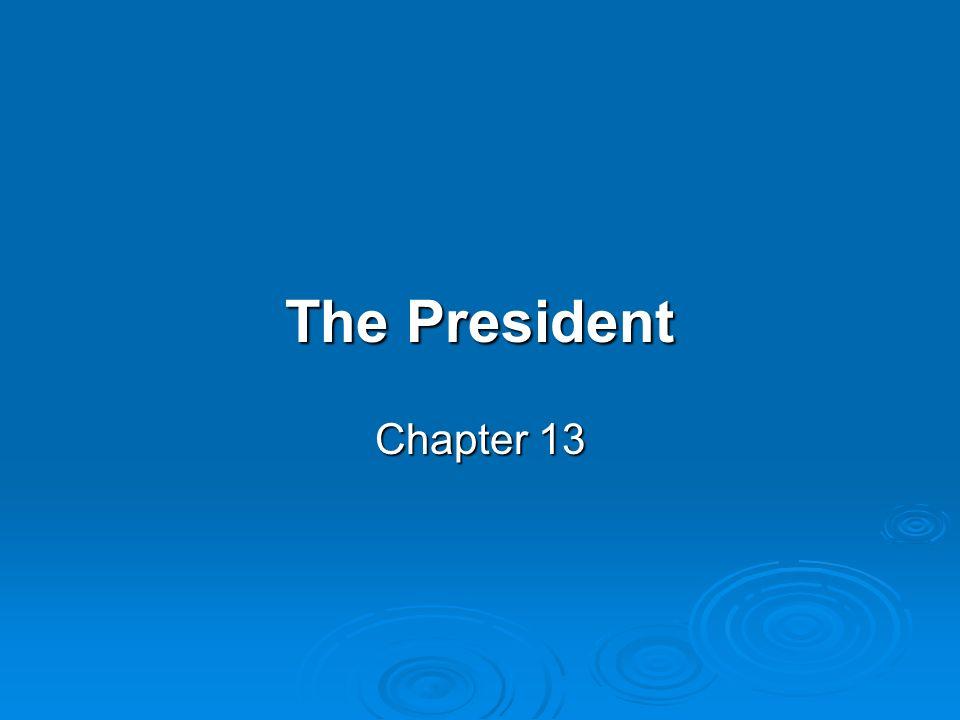 The President Chapter 13 Section 1 The presidents Job – President Job Description