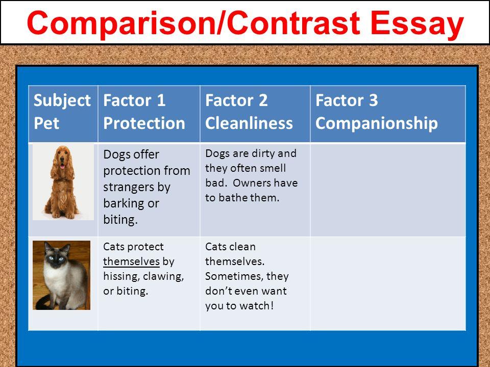 Literary comparison essays