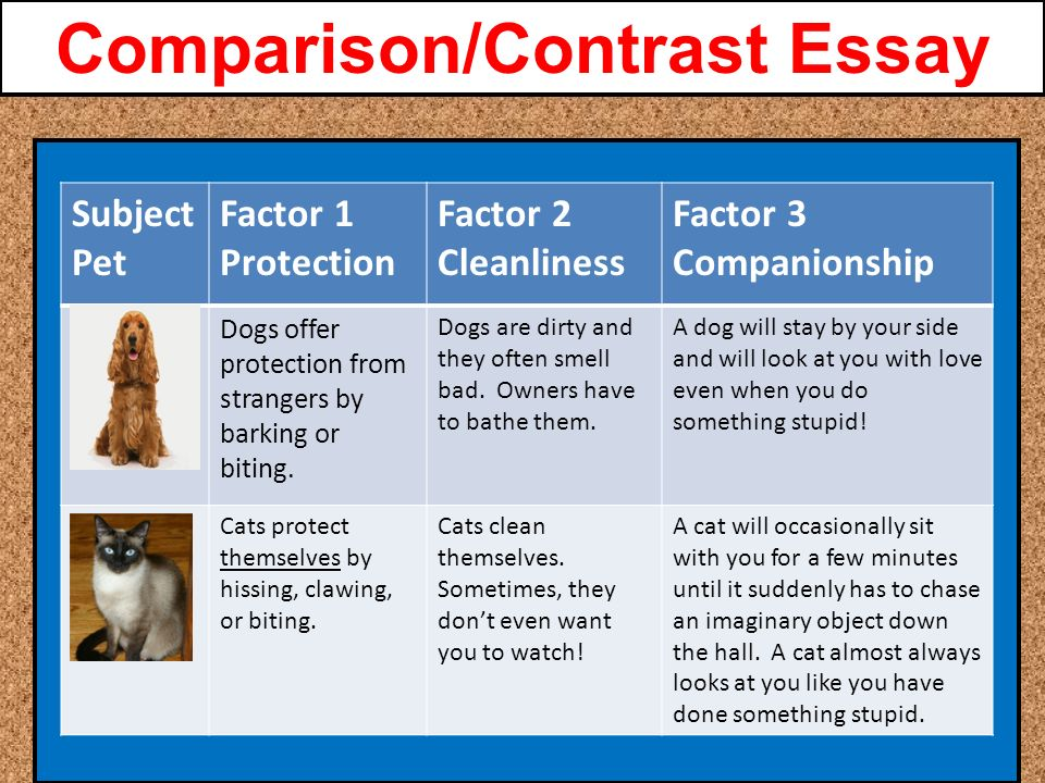 julius caesar project is due comparison contrast essay a pre  7 comparison contrast