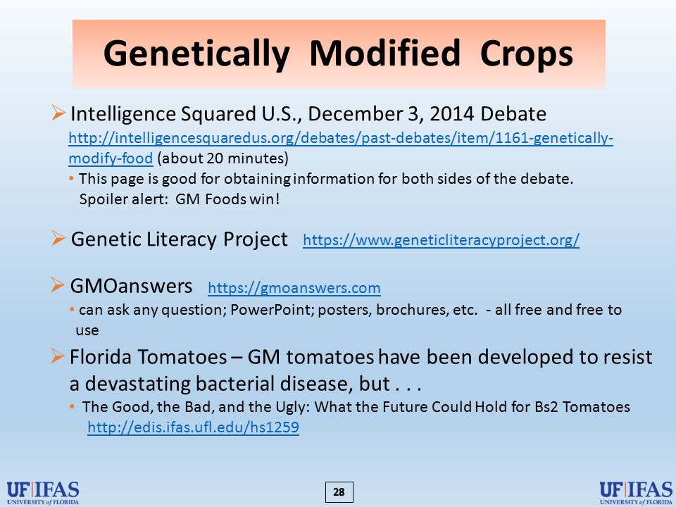 the debate over genetically modified crops essay The debate over genetically modified (gm) food is a heated one few contest that we are working in somewhat murky waters when it comes to genetically modified anything, human or plant alike at issue, really, is the question of whether we are prepared to use the technologies we've discovered.