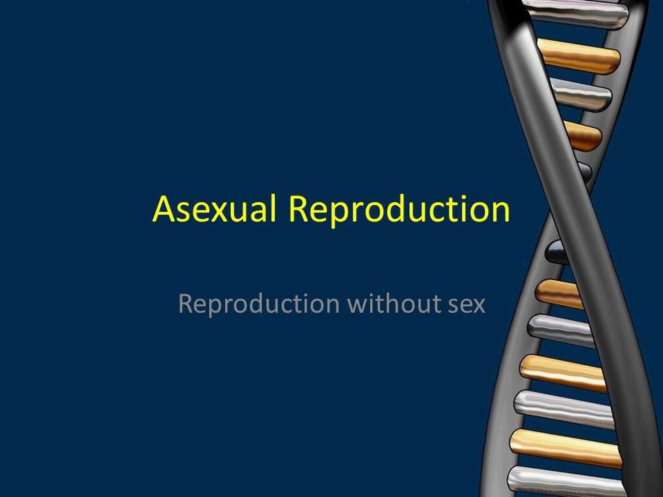 Reproduction without sex, candid naked pic