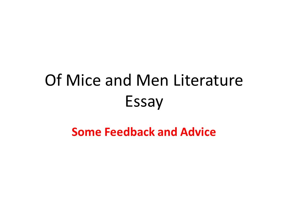 of mice and men literature essay some feedback and advice ppt  1 of mice and men literature essay some feedback and advice