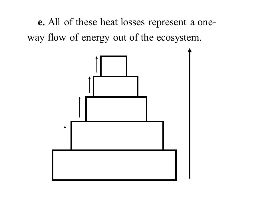 e. All of these heat losses represent a one- way flow of energy out of the ecosystem.
