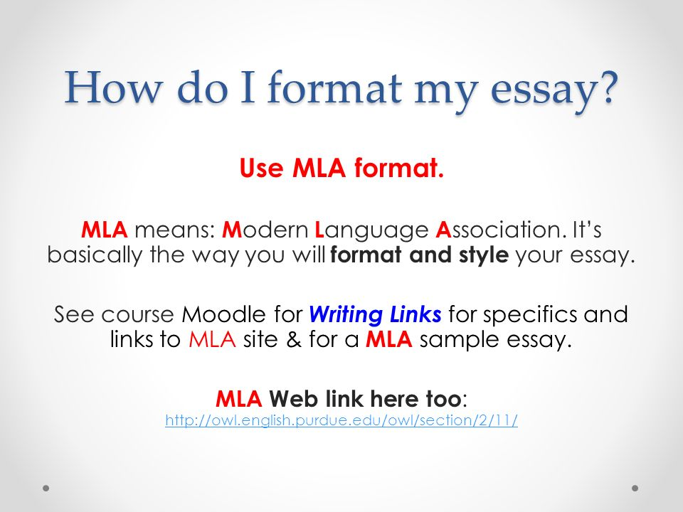 Sample essay format