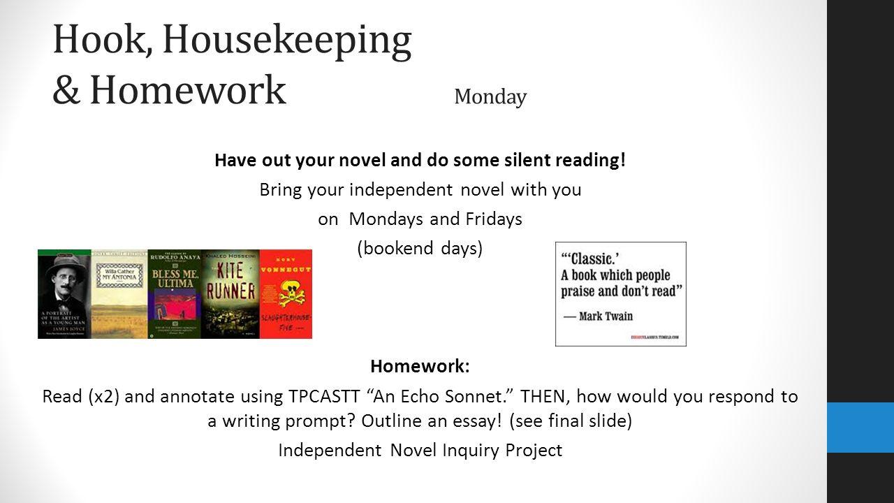 independent novel project essay