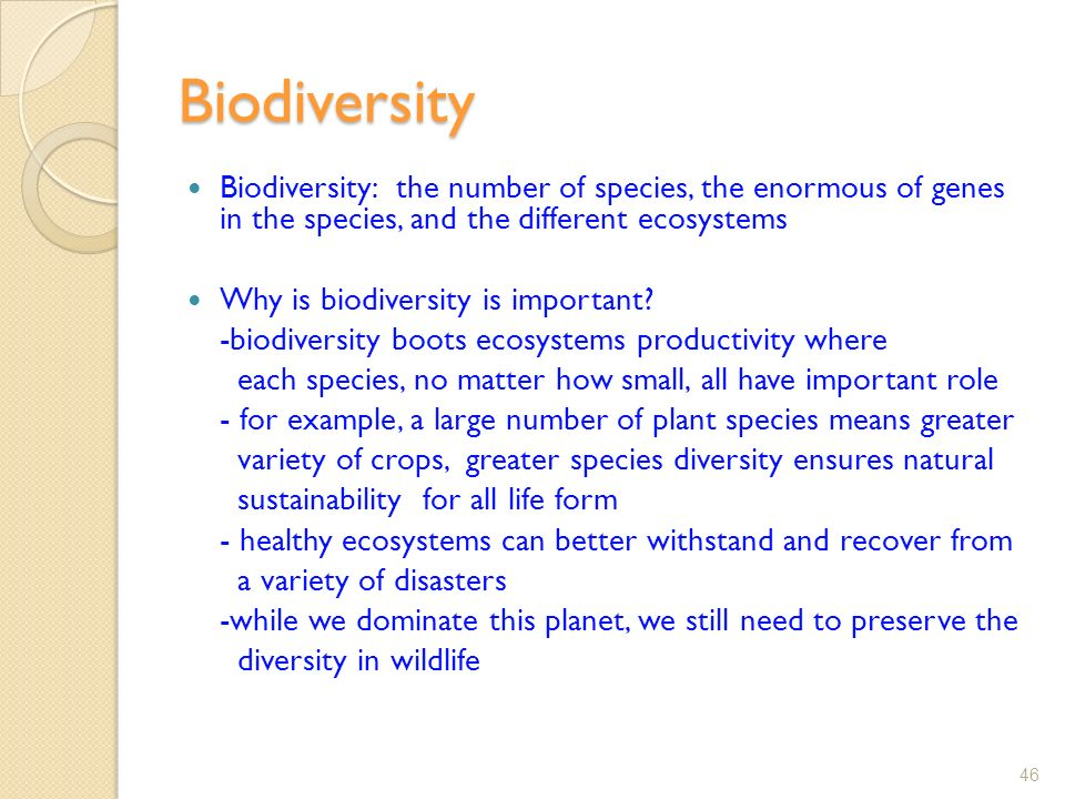 Biodiversity Biodiversity: the number of species, the enormous of genes in the species, and the different ecosystems Why is biodiversity is important.
