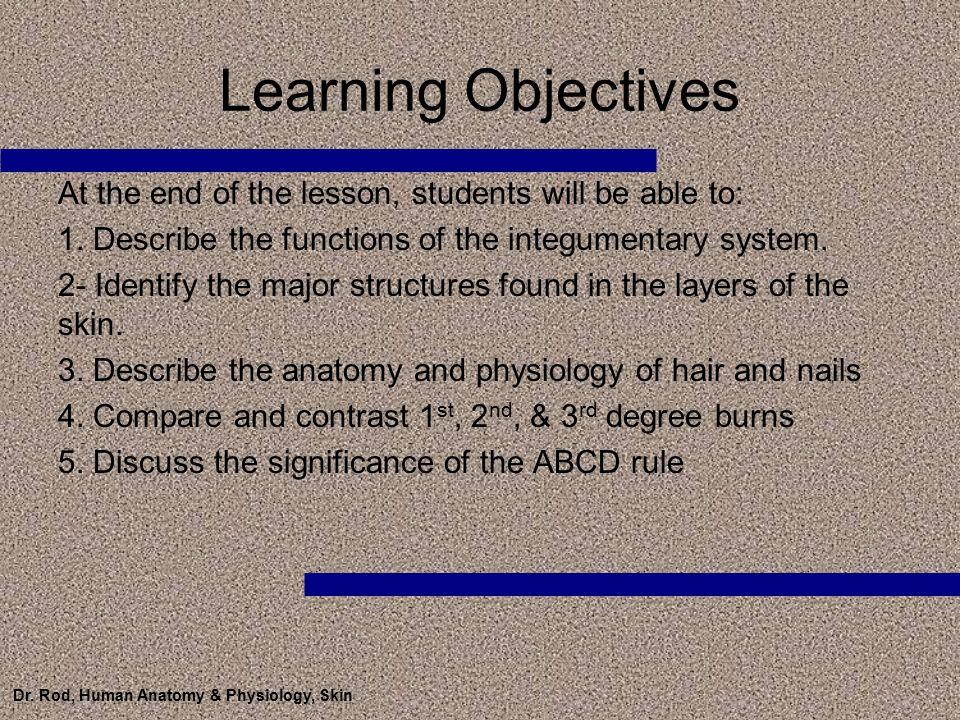 Vistoso Degree In Anatomy And Physiology Motivo - Imágenes de ...