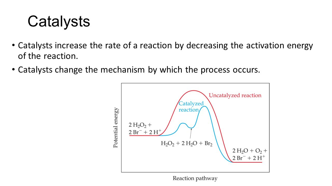 studying the rate of the reaction Chapter 14 chemical kinetics this tells us is that the reaction rate depends on the concentration of a available to react notice that when [a.