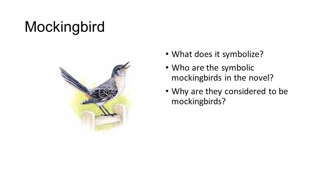 Warm up pair up with a partner to discuss the questions before 10 mockingbird what does it symbolize buycottarizona