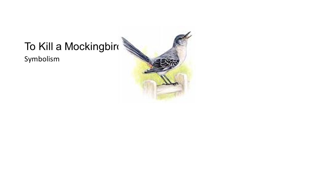 Warm up pair up with a partner to discuss the questions before 2 to kill a mockingbird symbolism buycottarizona