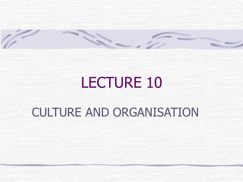 LECTURE 10 CULTURE AND ORGANISATION