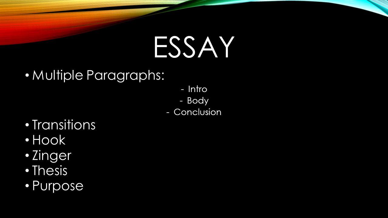 purpose body paragraphs essay